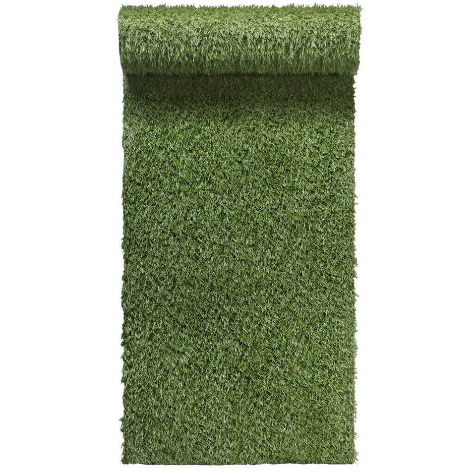 Grastapijt Brest 2 - groen - 400 cm - Leen Bakker
