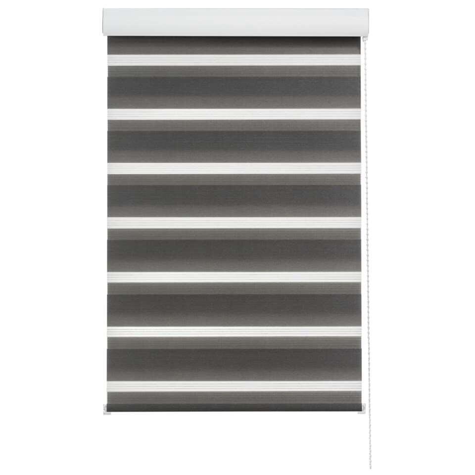 Store enrouleur jour et nuit - anthracite - 60x210 cm