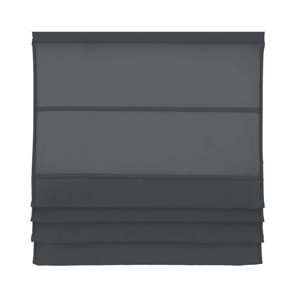 Vouwgordijn lichtdoorlatend - antraciet - 80x180 cm