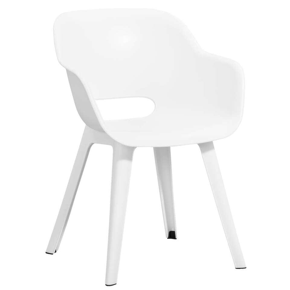 chaise coque akola blanche - Chaise Coque