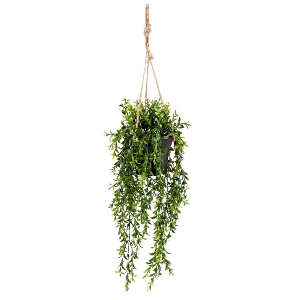 Boxwood kunst hangplant - groen - 50 cm