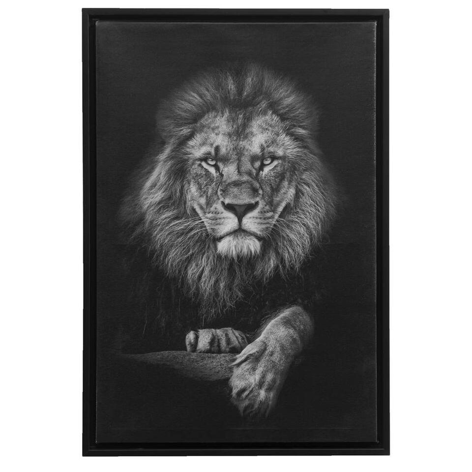 Tableau sur toile Lion - noir - 64x44x4 cm
