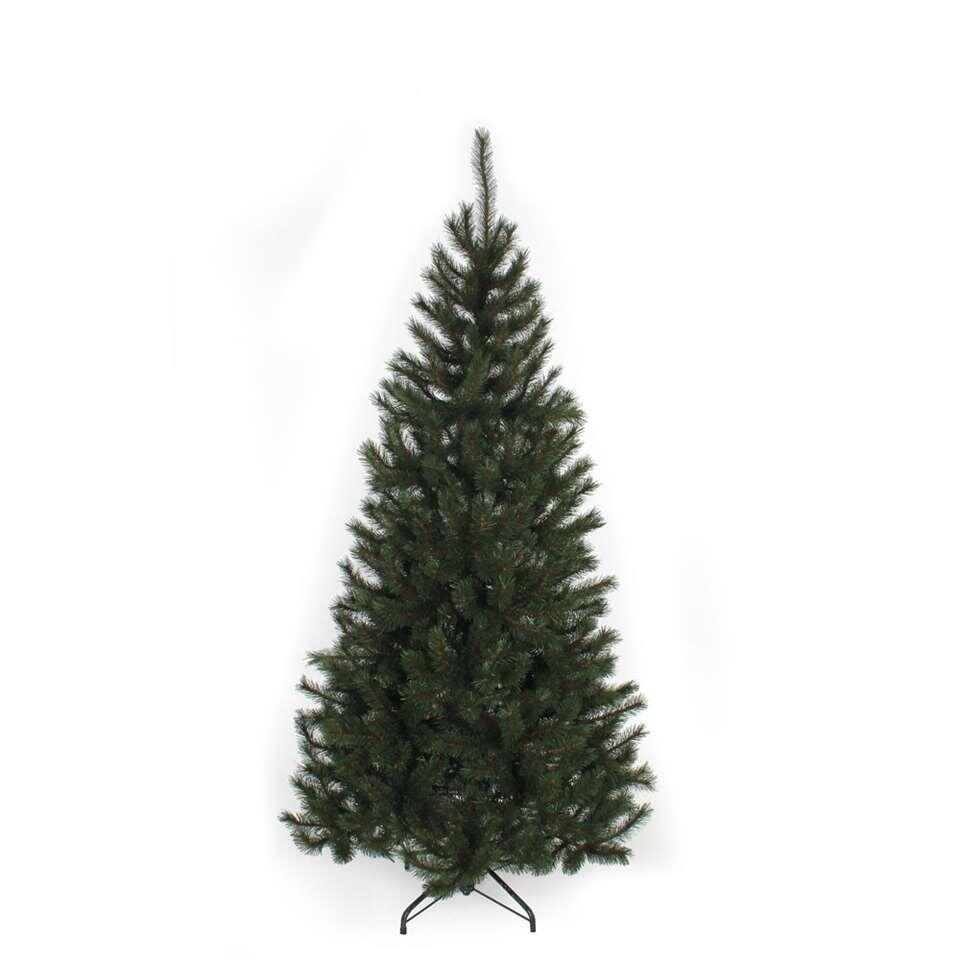 Black Box kerstboom Kingston - 215 cm