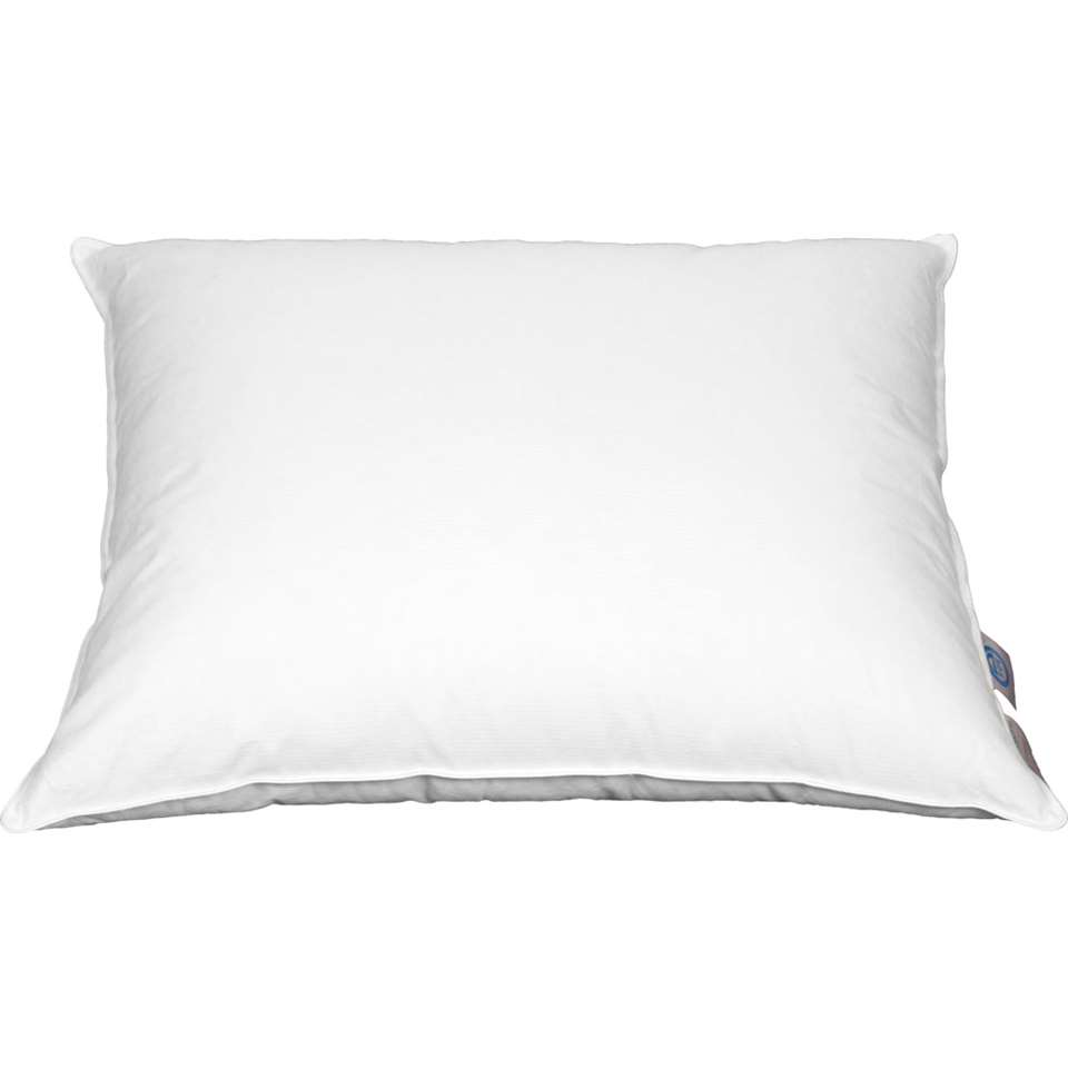 coussin Polydaun Home Collection 90 % duvet de canard 700 grammes - 60x70 cm